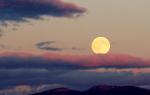 Moon over CWC 2006